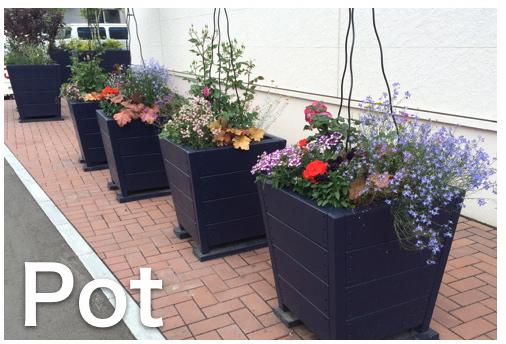 ASNAROを使用した高耐久大型ポット植栽事例
