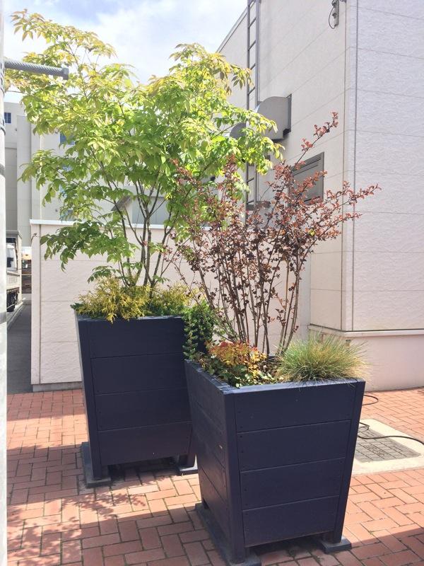 ビッグ・ポット・スリム、大型、植木鉢