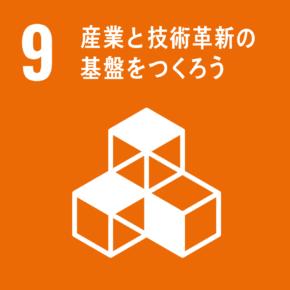 sitec.SDGs,09